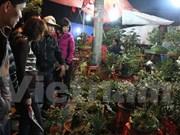 Mercado Vieng, lugar para comprar suerte