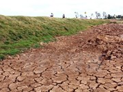 Comparte Bangladesh experiencias contra cambio climático con Vietnam