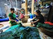 Hanoi: Preocupa la desaparición del oficio de hacer Com (arroz glutinoso tierno) de la aldea de Vong