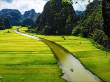 [Videos] Complejo turístico Trang An ofrece a visitantes espacio para relajación