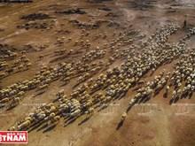 [Fotos] Actividades agrícolas de Ninh Thuan en temporada de sequía