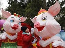 [Fotos] Países de Asia celebran fiestas del Nuevo Año Lunar