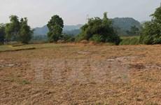 Vietnam sufrirá impactos por fenómeno climático El Niño