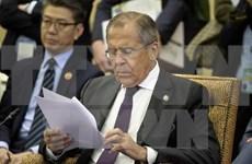 TLC entre Vietnam y UEE: trampolín para nexos Rusia- ASEAN