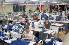 TLC ampliará oportunidades a empresas Vietnam-UE
