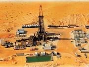 En producción oficial proyecto petrolero Vietnam-Argelia