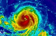 Filipinas: Al menos siete muertos por tifón Goni