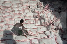 Myanmar reanudará exportación arrocera a mediados de septiembre