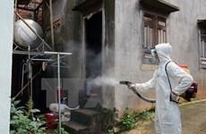 Incrementan casos de dengue en localidades vietnamitas