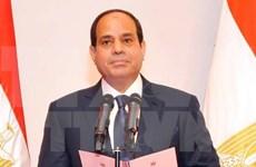 ASEAN y Egipto acuerdan intensificar cooperación multifacética
