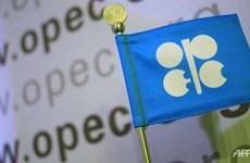 Indonesia se reincorporará a organización de exportadores de petróleo