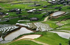 Semana cultura honra valores culturales de etnia Mong