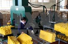 Vietnam espera unirse a Consejo Tripartito Internacional de Caucho