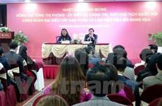 Califican de activa y creativa comunidad vietnamita en Rusia