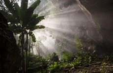 Fotos de Son Doong que parecen de un edén escondido