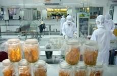 Vietnam presenta proceso de producción de hongo medicinal