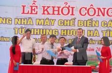 Construyen planta de procesamiento de cuerno de ciervo en Ha Tinh