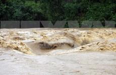 Vietnam conmemora Día mundial para Reducción del Riesgo de Desasastres