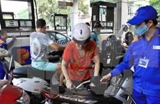 Vietnam determina aumentar uso de biogasolina