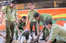 Honran a vietnamitas por esfuerzos en protección de animales salvajes