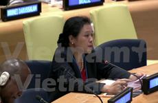 Vietnam respalda a ejecución jurídica sobre la base de Carta de ONU