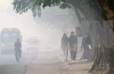 Polución ambiental afecta a la salud de 500 mil indonesios