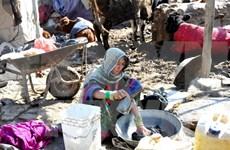 Vietnam envía condolencias a Pakistán y Afganistán por terremoto