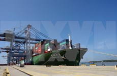 Puerto meridional Cai Mep recibe súper carguero