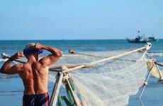 """Viaje con """"ancianos de hierro"""" para pescar camarones en mar vietnamita"""