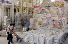 Exportaciones del arroz de Vietnam van viento en popa