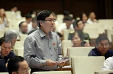 Parlamento vietnamita interpela a titulares de rama agrícola y comercial
