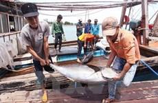 Alcanzable meta de exportación de productos agroforestales vietnamitas