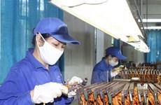 Empresas de Vietnam y UEE buscan oportunidades de cooperación