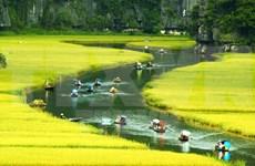 Vietnam destaca papel de la comunidad en la preservación del patrimonio