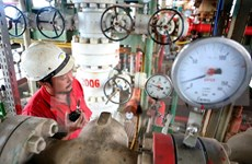 Entra en operación plataforma petrolífera ThTC-02 de yacimiento Tho Trang
