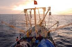 Vietnam y China comienzan exploración conjunta en el Golfo de Bac Bo (Tonkín)