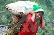 PNUD ayuda a Vietnam para eliminar discriminación de género