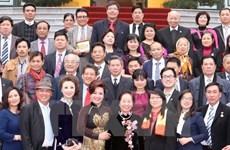 """Programa """"Primavera en tierra natal"""" traen de vuelta vietnamitas residentes en el ex"""