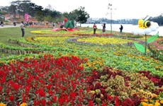 Concluyen Festival de Flores de Da Lat