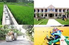 Provincia vietnamita aumenta inversiones en construcción de nueva ruralidad