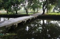 Publican informe de resultados de excavación en ciudadela de Luy Lau
