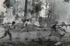 Rememoran en Vietnam victoria contra régimen genocida en Cambodia
