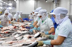 Valor de exportaciones de pescado Tra prevé caer cinco por ciento en 2016
