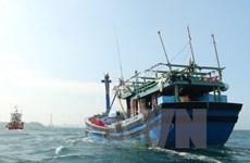 Pescadores vietnamitas rescatan a turista chino en Golfo Tonkín