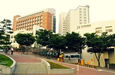 Dong Nai y universidad sudcoreana cooperan en formación de recursos humanos