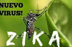Vietnam no reporta ningún caso infectado por virus Zika