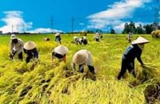 Vietnam abre concurso para buscar nuevos modelos de cooperativas