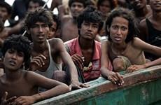 Tailandia fomenta lucha contra trata humana