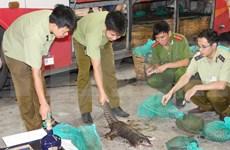 Vietnam celebrará conferencia internacional sobre comercio de animales salvajes