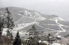 Nieves cubren varias partes de Vietnam